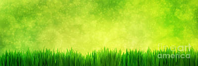 Copy Photograph - Fresh Green Grass Panorama On Natural Blur Nature Background by Michal Bednarek