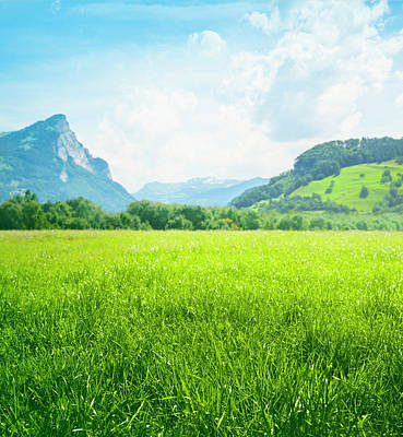 Photograph - Fresh Green Meadow In Mountains by Spooh