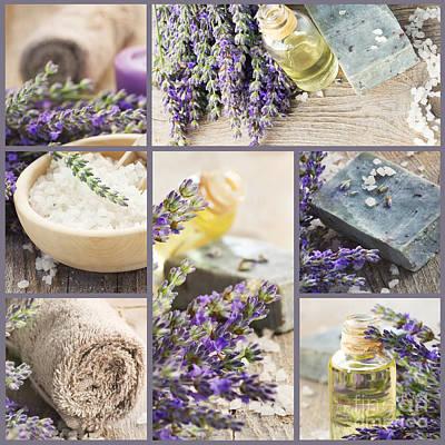 Fresh Lavender Collage Print by Mythja  Photography