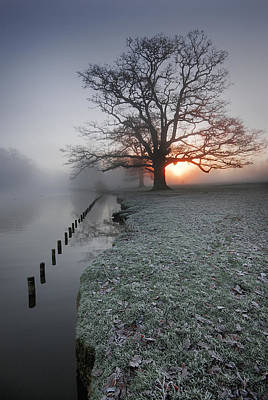 Photograph - Fresh New Morning  by John Chivers