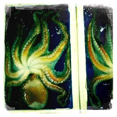 Octopus Wall Art - Photograph - Fresh Octopus At The Fish Market by Kim Max