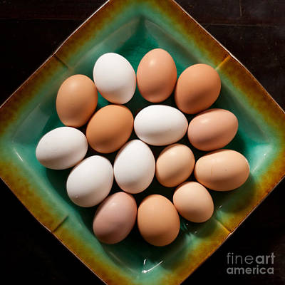 Plant Photograph - Fresh Organic Eggs by Jared Shomo