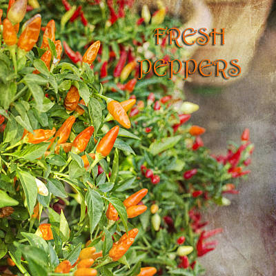 Photograph - Fresh Peppers by Marianne Campolongo