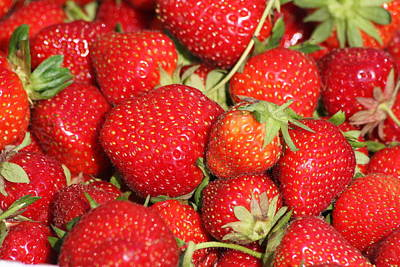 Photograph - Fresh Picked Strawberries by Vadim Levin