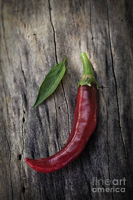 Fresh Red Chili Pepper Art Print by Mythja  Photography