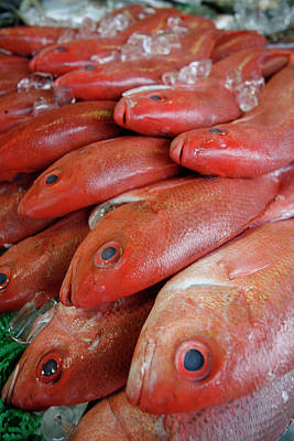 Fishy Photograph - Fresh Red Snapper At The Fish Market by Chris Pinchbeck