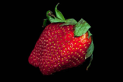 Photograph - Fresh Red Strawberry Isolated On A Black Background by Alex Grichenko