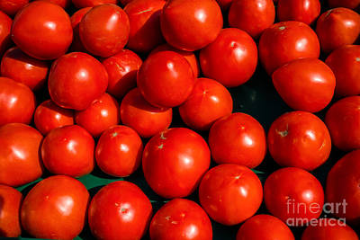 Fresh Ripe Red Tomatoes Art Print by Edward Fielding