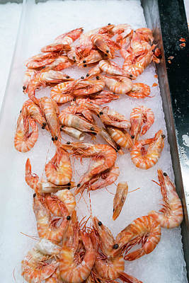 Fresh Shrimp Wall Art - Photograph - Fresh Shrimp On Ice by Wladimir Bulgar/science Photo Library