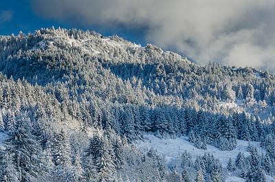 Photograph - Fresh Snow On The Mountain by Greg Nyquist