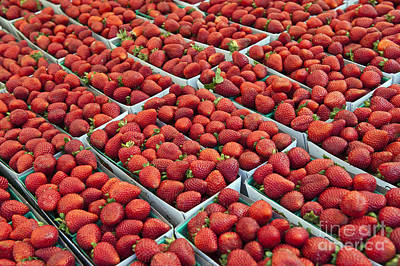 Photograph - Fresh Strawberries Fruit Display On Sale At Farmers Market by David Zanzinger