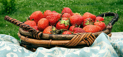 In Baskets Photograph - Fresh Strawberries In Basket by Iris Richardson