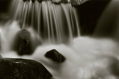 Photograph - Fresh Water by Amarildo Correa