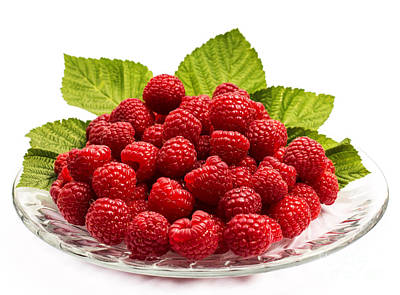 Raspberry Photograph - Freshly Picked Delight by Barbara McMahon