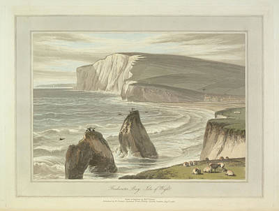 Freshwater Bay Art Print by British Library