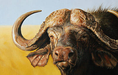Five Painting - African Buffalo by Mario Pichler