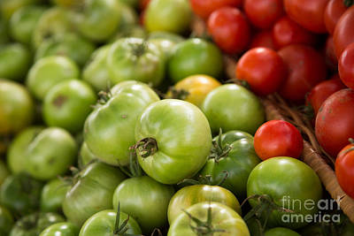 Photograph - Fried Green Tomatos by Rebecca Cozart