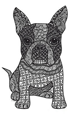 Drawing - Friend - Boston Terrier by Dianne Ferrer