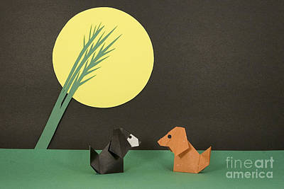 Origami Photograph - Friends 2 by Nobi Nagase