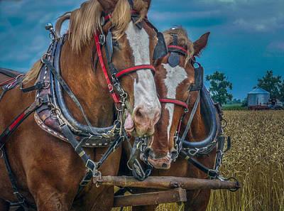 Keck Photograph - Two Friends by F Leblanc
