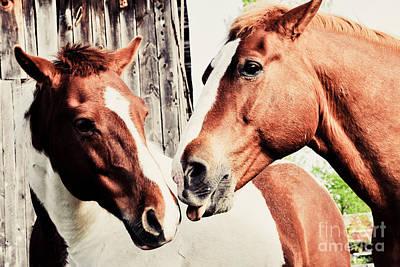 Sepia Photograph - Friends by Cheryl Baxter