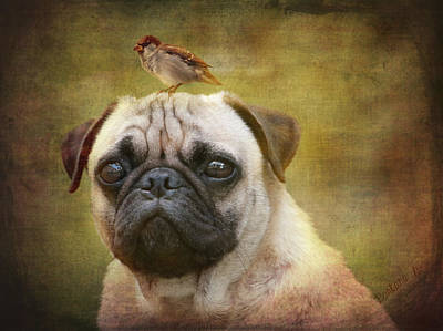 Friends Like Pug And Bird Art Print by Barbara Orenya