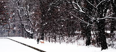 Photograph - Friends Walk In Snowstorm - Montreal - Slim Horizontal by Jacqueline M Lewis