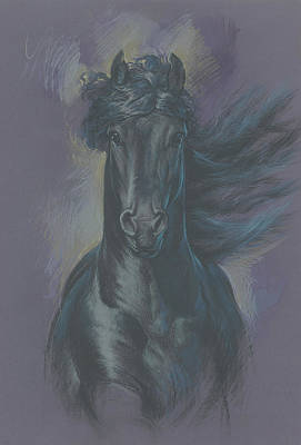 Friesian Horse Art Print by Zorina Baldescu