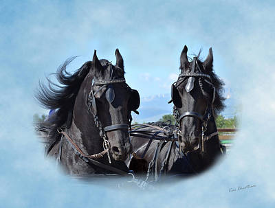 Friesian Digital Art - Friesians Flying by Kae Cheatham