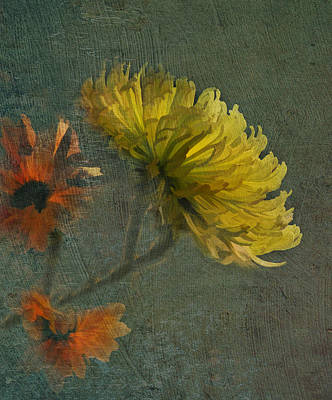 Photograph - Frilly Petals by Grace Dillon