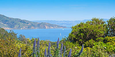 Photograph - Frisco Bay by Lutz Baar