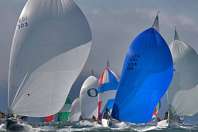 Photograph - Frisco Spinnakers by Steven Lapkin