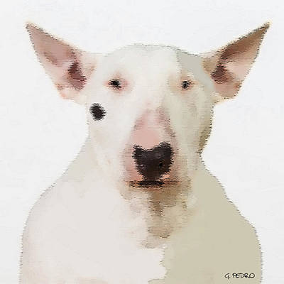 Painting - Fritzie The Bull Terrier by George Pedro
