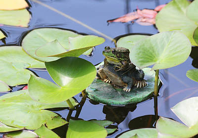 Photograph - Frog And Friend by Trina  Ansel