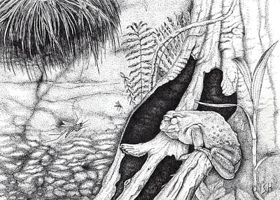 Houseplants Drawing - Frog And Mosquitoes by Inger Hutton