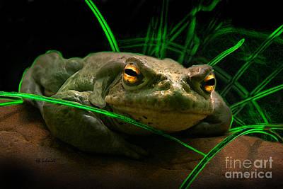 Digital Art - Frog by E B Schmidt