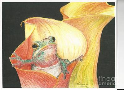 Drawing - Frog In Flower by Bill Hubbard