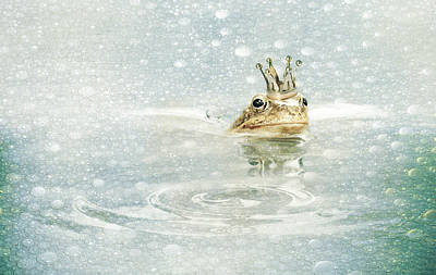 Amphibians Mixed Media - Frog Prince In The Rain by Heike Hultsch