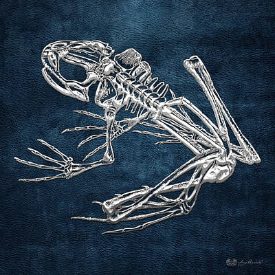 Frog Skeleton In Silver On Blue  Original