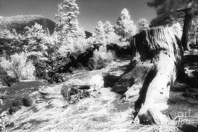 Photograph - From The Crater Slope - Infrared by Paul W Faust -  Impressions of Light