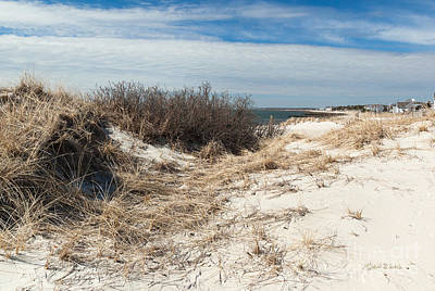 Beach Scenes Photograph - From The Dunes by Michelle Wiarda