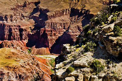 Digital Art - From Yaki Point 1 Grand Canyon by Bob and Nadine Johnston