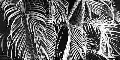 Tropical Trees Painting - Fronds by Scott Robinson