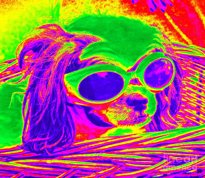 Photograph - Front Seat Driver Pop Art - Puppy Mania by Ella Kaye Dickey