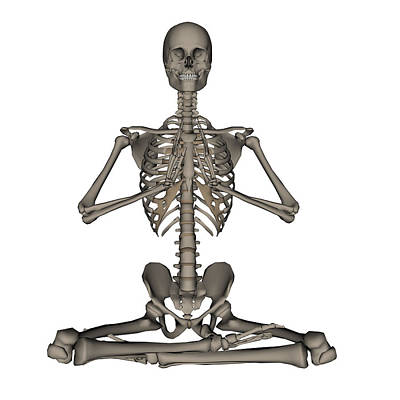 Front View Of Human Skeleton Meditation Art Print by Elena Duvernay