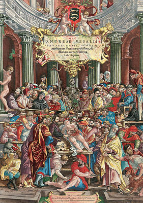 Elaborate Painting - Frontispiece To De Humani Corporis Fabrica Libri Septem by Venetian School