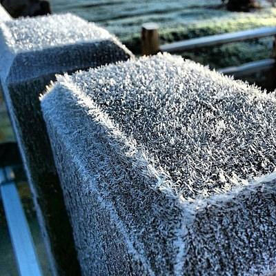 Frost Original by Abraham Alvarez