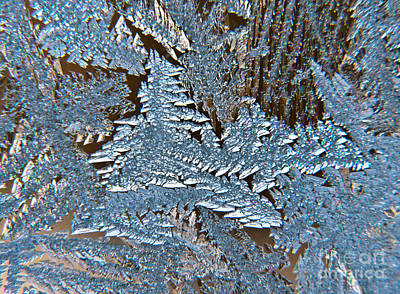 Photograph - Frost Macro by Cheryl Baxter