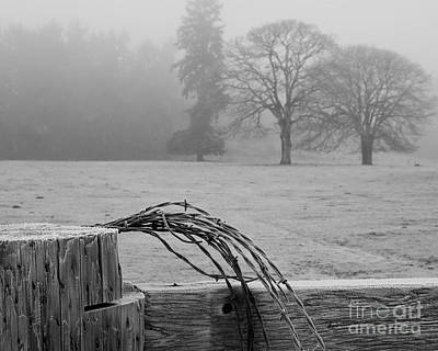 Frost On The Fence Post Art Print