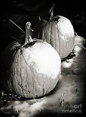Photograph - Frost On The Pumpkin by John Rizzuto